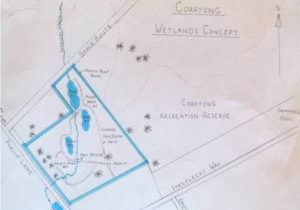 Corryong Wetlands Proposed Plan